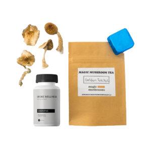 First Timer Magic Mushroom Kit.
